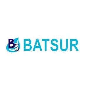 logo de Baterias del Sureste