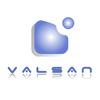 logo de Valvulería y Saneamientos, S.L. (Valsan)
